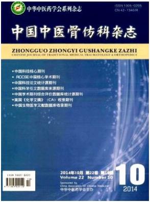 中国中医骨伤科杂志骨科医学杂志