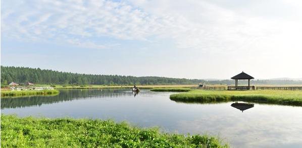 塞罕坝林场生态环境保护分析