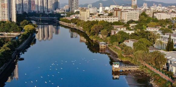 城市水环境治理和污染控制措施的探讨