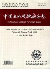 《中国麻风皮肤病杂志》