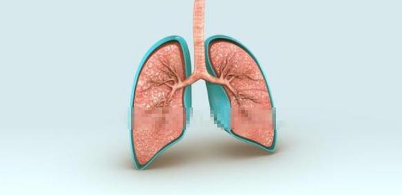 呼吸系统论文可以投稿哪些sci杂志