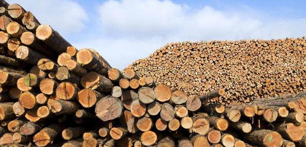 大数据视域下满洲里木材流通企业的供应链管理策略研究