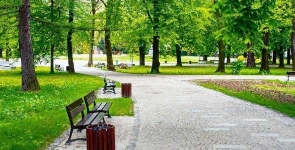 城市道路绿地景观提升改造及管理分析