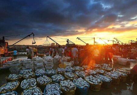 渔业产业化组织