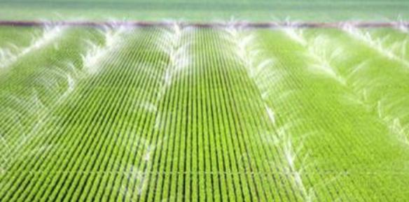农田水利工程中节水灌溉技术的应用研究