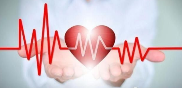 社区心脑血管事件早期判别模型构建分析