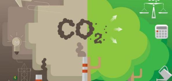市场化碳中和目标实现的会计手段与实施