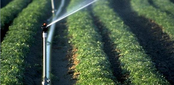 农田水利建设中节水灌溉技术的思考