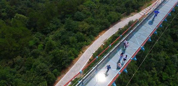 大跨度人行悬索桥结构设计关键技术