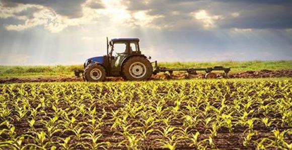 新时期推动我国农业高质量发展的对策建议