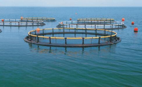 水产良种繁育场 项目建筑设计及节能措施
