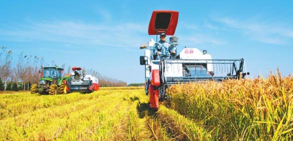 农业工程sci包括哪些期刊