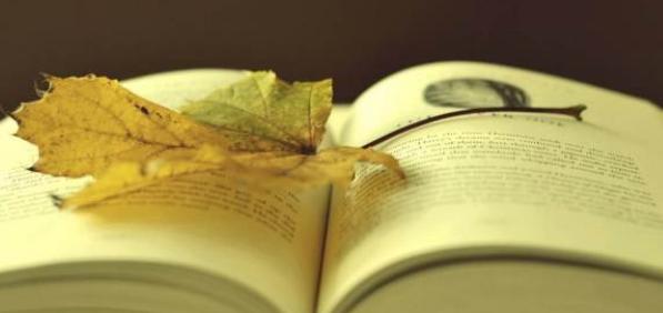 论文小结和摘要有什么不同