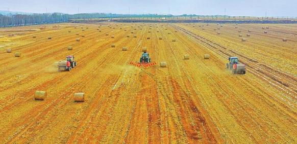肃州区秸秆资源化利用现状的思考