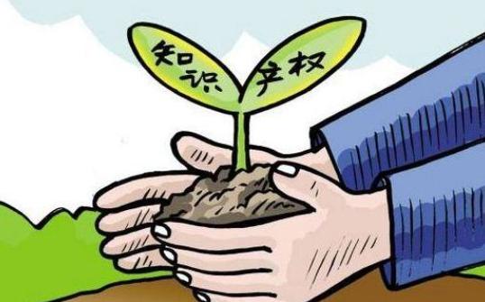 农业知识产权保护现状与对策