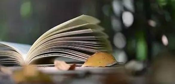 国家级期刊与省级期刊的区别