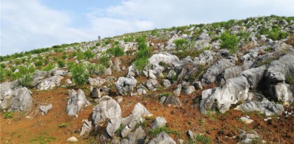 广西石漠化地区旅游产业发展研究