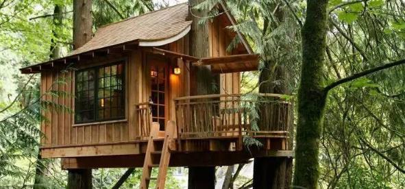 生态旅游下的树屋景观设计