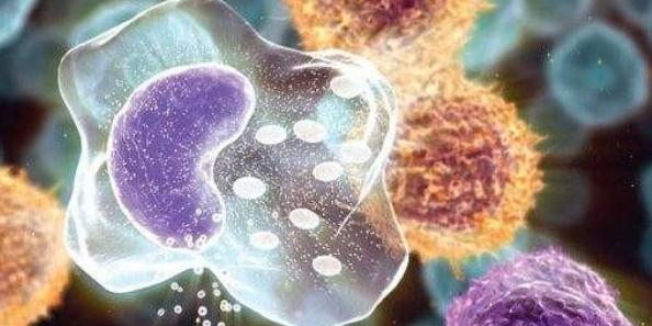 全病程管理模式在肺癌化疗患者中的应用